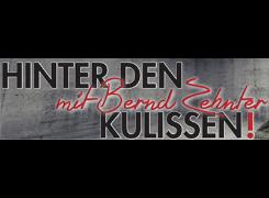 Logo Moderation und Zauberkunst Bernd Zehnter, Reichenberg