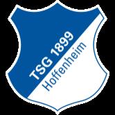 Team-Logo hoffenheim